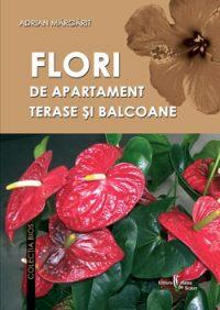 Flori de apartament, terase si balcoane